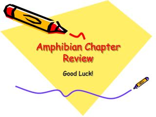 Amphibian Chapter Review