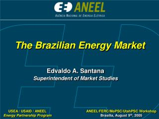 The Brazilian Energy Market