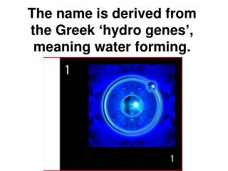 The name is derived from the Greek 'hydro genes', meaning water forming.