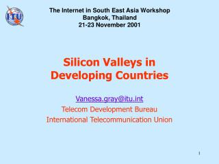 Silicon Valleys in  Developing Countries