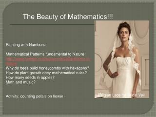The Beauty of Mathematics!!!