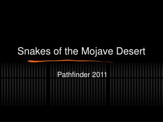 Snakes of the Mojave Desert