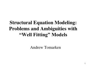 "Structural Equation Modeling: Problems and Ambiguities with ""Well Fitting"" Models"