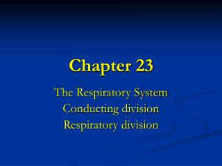 The Respiratory System Conducting division Respiratory division