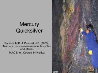 Mercury Quicksilver
