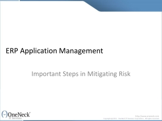ERP Application Management: Important Steps in Mitigating Ri