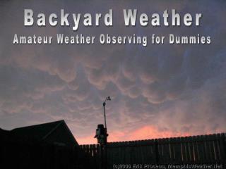 Backyard Weather