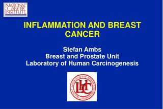 INFLAMMATION AND BREAST CANCER