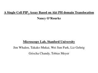 A Single Cell PIP3 Assay Based on Akt PH domain Translocation Nancy O Rourke    Microscopy Lab, Stanford University Jim