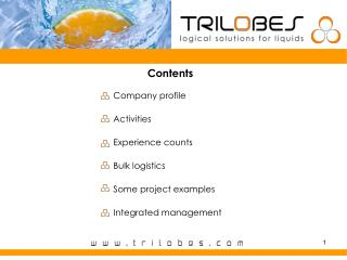 Contents Company profile Activities Experience counts Bulk logistics Some project examples Integrated management