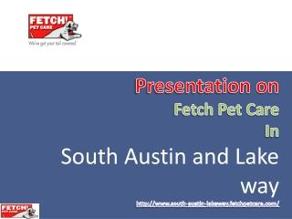 Reliable Pet Care Services