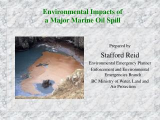 Environmental Impacts of  a Major Marine Oil Spill