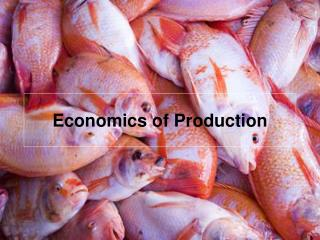 Economics of Production
