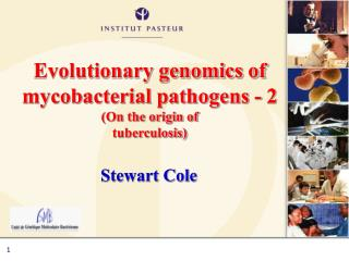 Evolutionary genomics of mycobacterial pathogens - 2 (On the origin of tuberculosis)