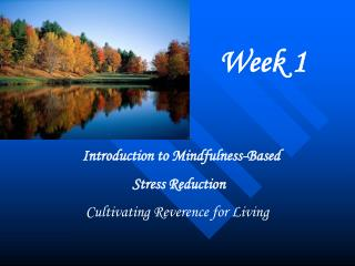 Introduction to Mindfulness-Based  Stress Reduction  Cultivating Reverence for Living