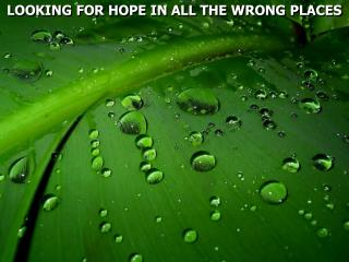 LOOKING FOR HOPE IN ALL THE WRONG PLACES