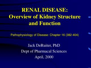 RENAL DISEASE: Overview of Kidney Structure and Function  Pathophysiology of Disease: Chapter 16 382-404