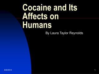 Cocaine and Its Affects on Humans