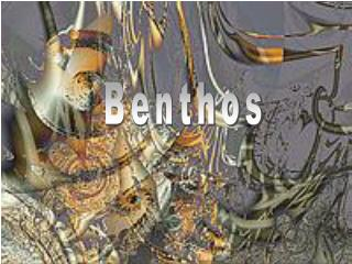 Benthos