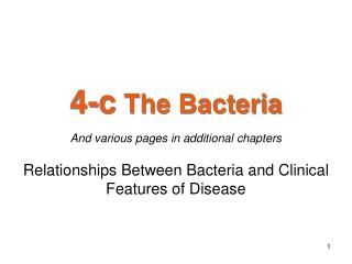 4-c  The Bacteria