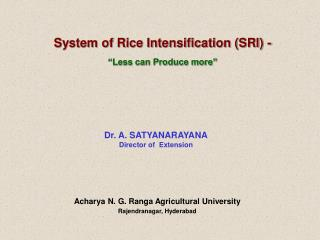 "System of Rice Intensification (SRI) - ""Less can Produce more"""