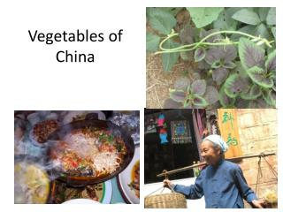 Vegetables of China