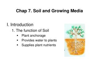 Chap 7. Soil and Growing Media