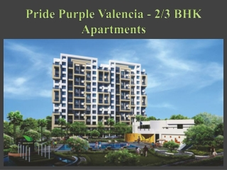 Pride Purple Valencia