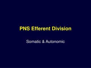 PNS Efferent Division