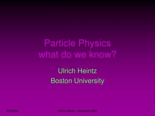 Particle Physics what do we know?