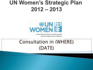 UN Women's Strategic Plan 2012 – 2013