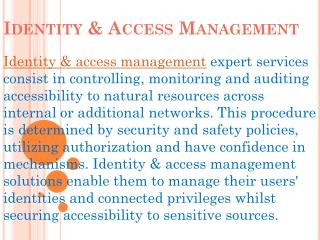 identity access management framework