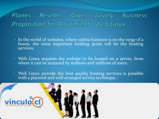 Planes Reseller Gives Lovely Business Proposition for Alojamiento Web Linux