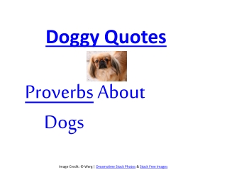 Proverbs about Dogs