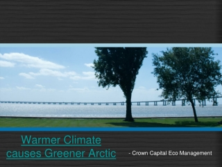Warmer Climate causes Greener Arctic | Zimbio