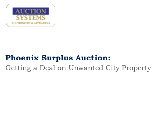 Phoenix Surplus Auction:  Getting a Deal on Unwanted City Pr