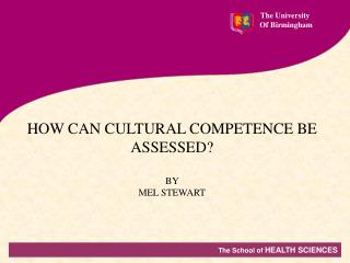 HOW CAN CULTURAL COMPETENCE BE ASSESSED? BY  MEL STEWART