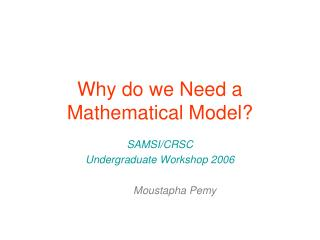 Why do we Need a Mathematical Model?