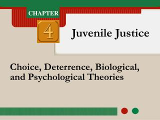 Choice, Deterrence, Biological, and Psychological Theories