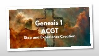 Genesis 1:26 (NRSV)