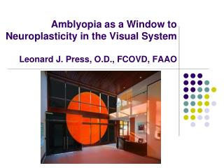 Amblyopia as a Window to Neuroplasticity in the Visual System  Leonard J. Press, O.D., FCOVD, FAAO