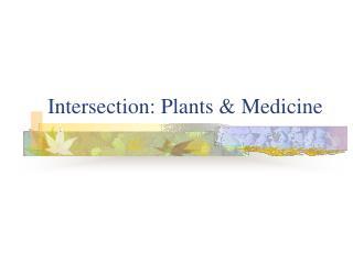 Intersection: Plants & Medicine