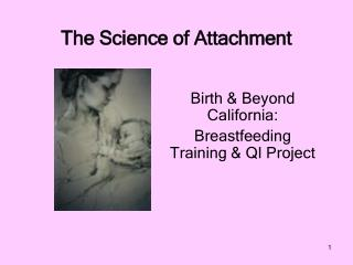 The Science of Attachment