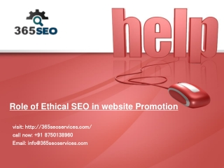 SEO Services in India, top 10 ranking guaranteed call +91 87