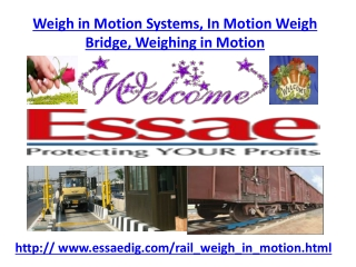 Weigh in Motion Systems, In Motion Weigh Bridge, Weighing in