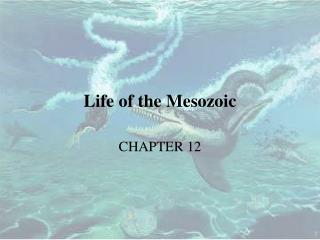 Life of the Mesozoic