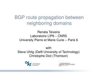 BGP route propagation between neighboring domains
