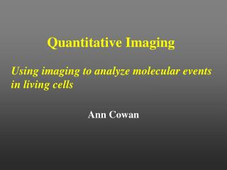 quantitative imaging