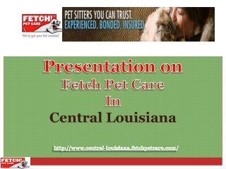 Fetch Pet Care and Pet Health Care In Central Louisiana