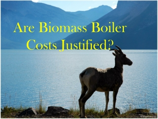 METACAFE - Are biomass boiler costs justified
